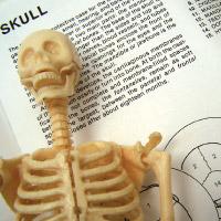 Biology different nursing majors