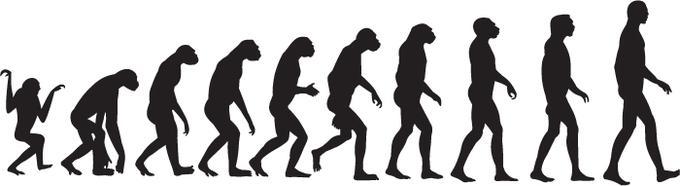 Αποτέλεσμα εικόνας για evolution